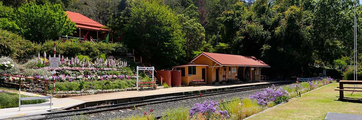 Spring Bluff Railway Station Gardens
