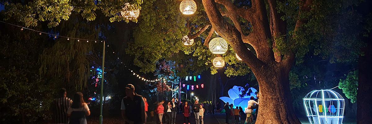 Night Garden powered by Ergon Energy Retail