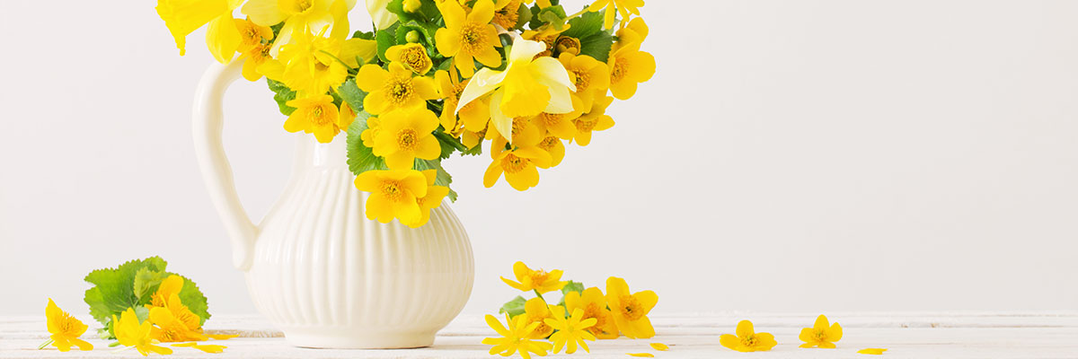 QCWA Vase Extravaganza